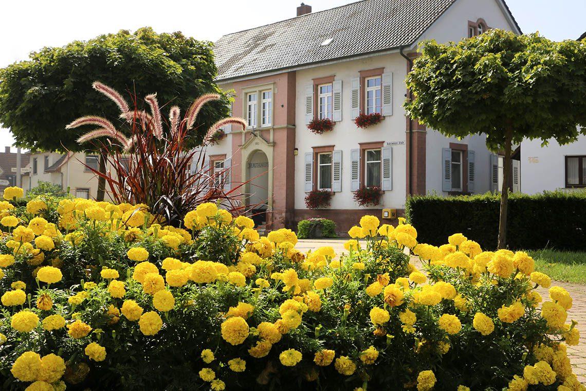 rathaus einrichtungen aktives dorf leutesheim litze homepage rathaus