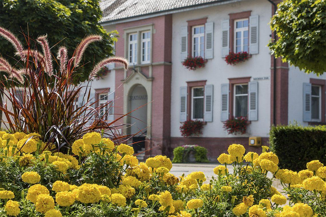 kontakt aktives dorf leutesheim website vereine svl sportverein